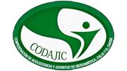 codajic logo color