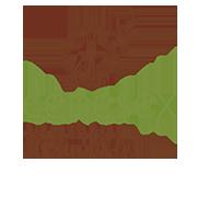 cenesex_logo color